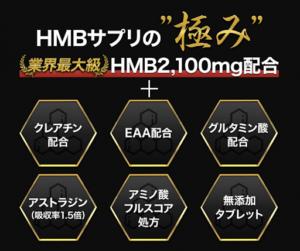 HMB極ボディ詳細情報